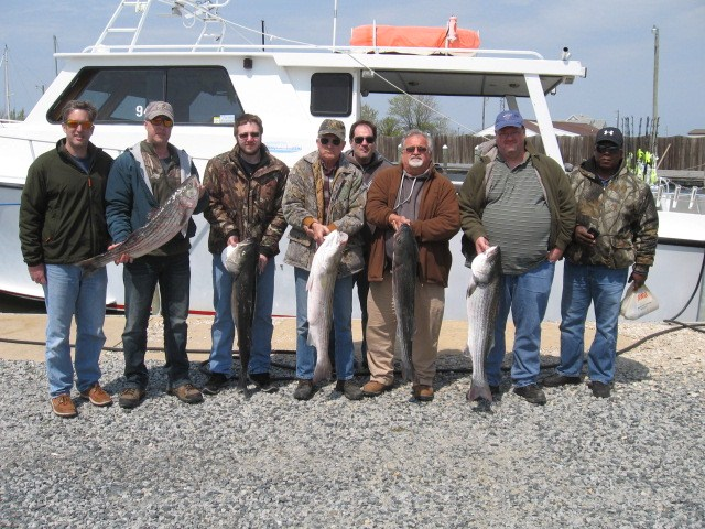 Chesapeake Bay Fishing For Trophy Striped Bass!