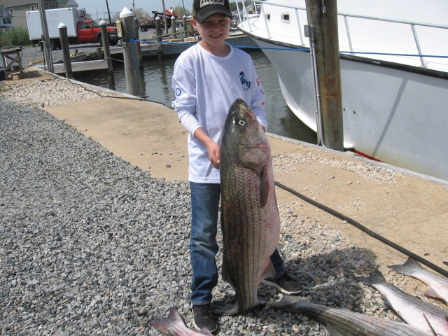 The Biggest Rockfish That This Little Man Has Ever Caught!