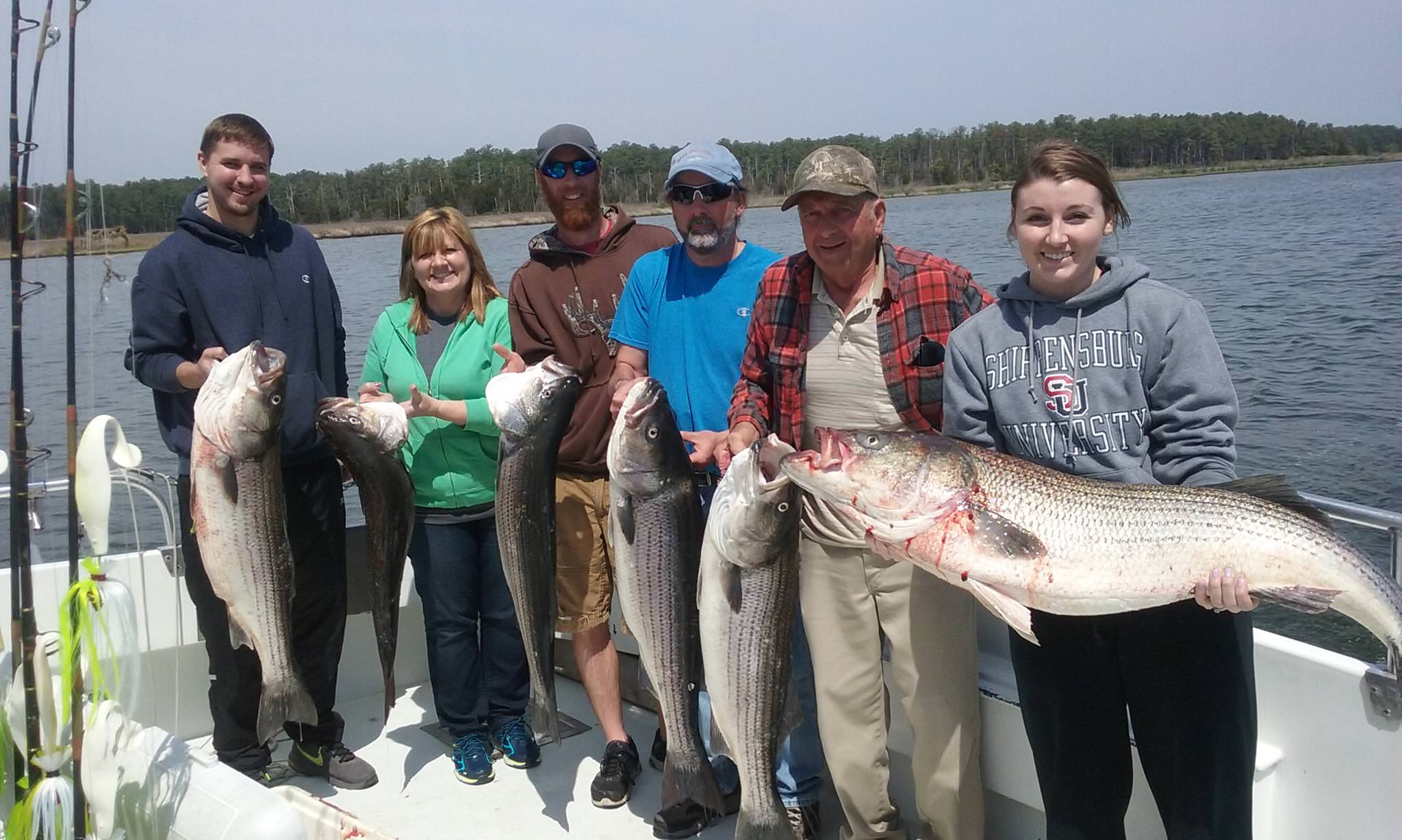 BIG Limit Of Chesapeake Bay Rockfish!