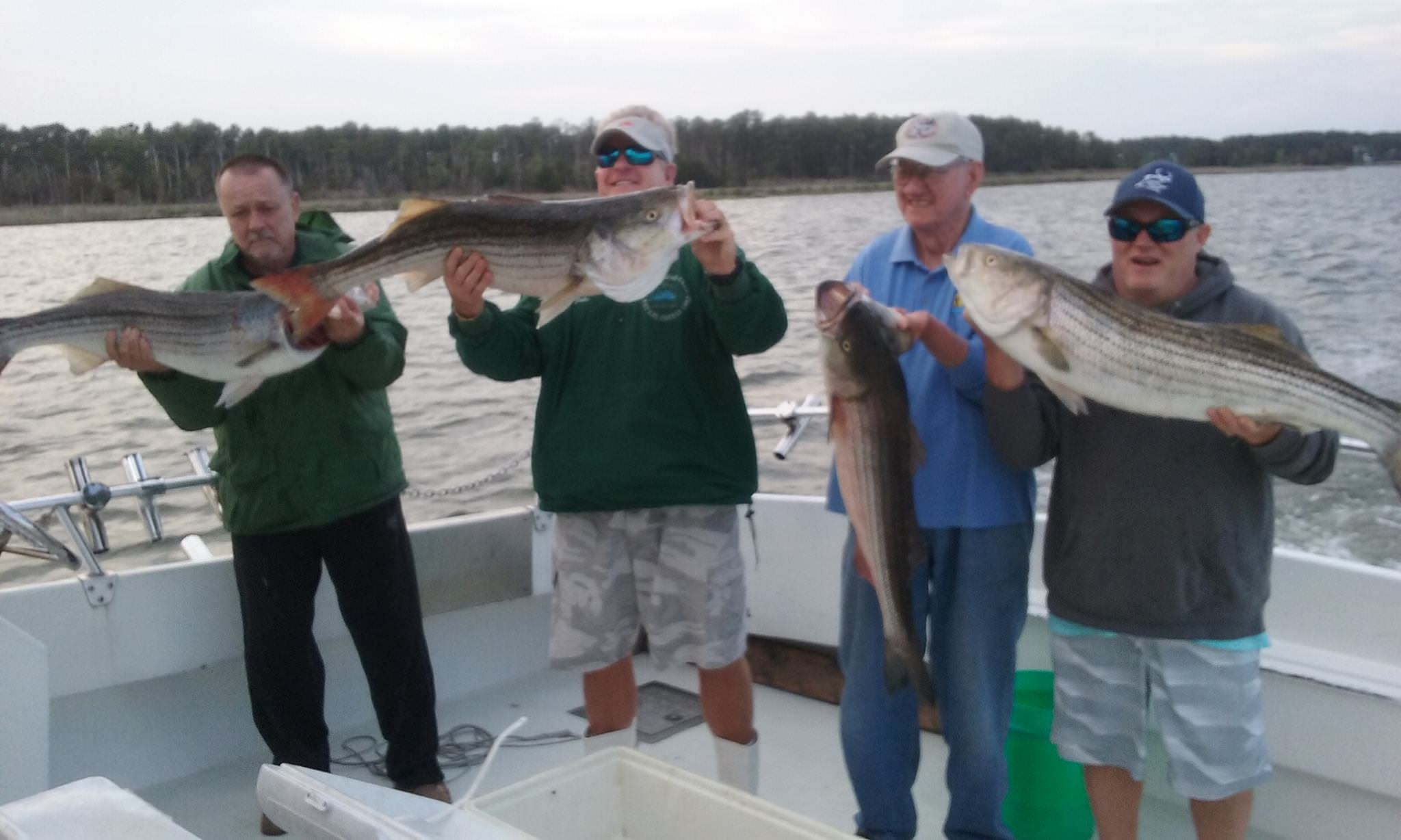 Four More Bangin' Trophy Rockfish