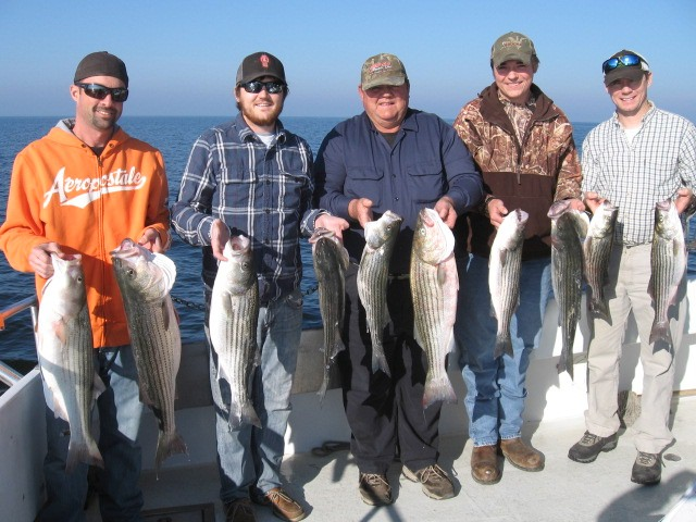 More Big Fish From The Chesapeake Bay!