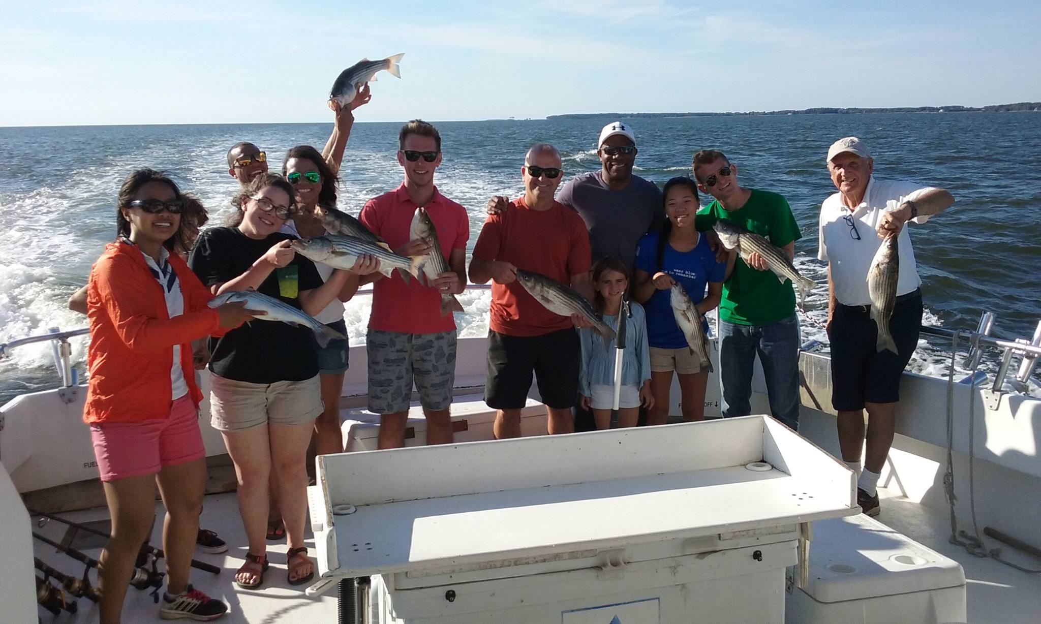 Great Catch Of Chesapeake Bay Rockfish!